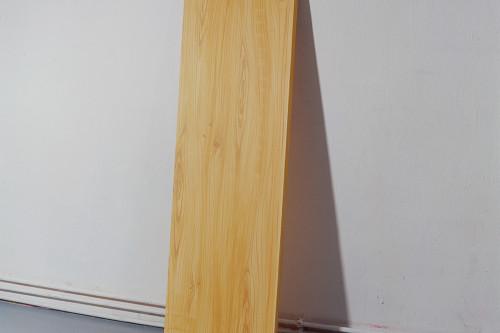 Du, wiedergeboren als Brett, 2004, 130 x 40 x 3 cm